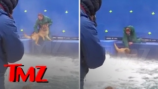 Repeat youtube video A DOG'S PURPOSE' TERRIFIED GERMAN SHEPHERD FORCED INTO TURBULENT WATER | TMZ