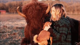 This 1,200-pound, blind bison has become an awesome nanny for animals in need