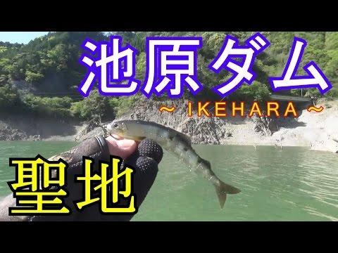 Bass Fishing【Big dam of japan】トボト谷の殺し屋ブラックバス!!
