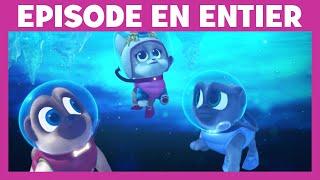 Le Monde de Bingo & Rolly - La licorne des mers