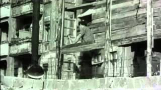 Året var 1961 - Dokumentärfilm