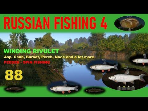 RUSSIAN FISHING 4 - 88 - WINDING RIVULET - Feeder & Spin Fishing - Nice Chubs, Asps, & Muscles...