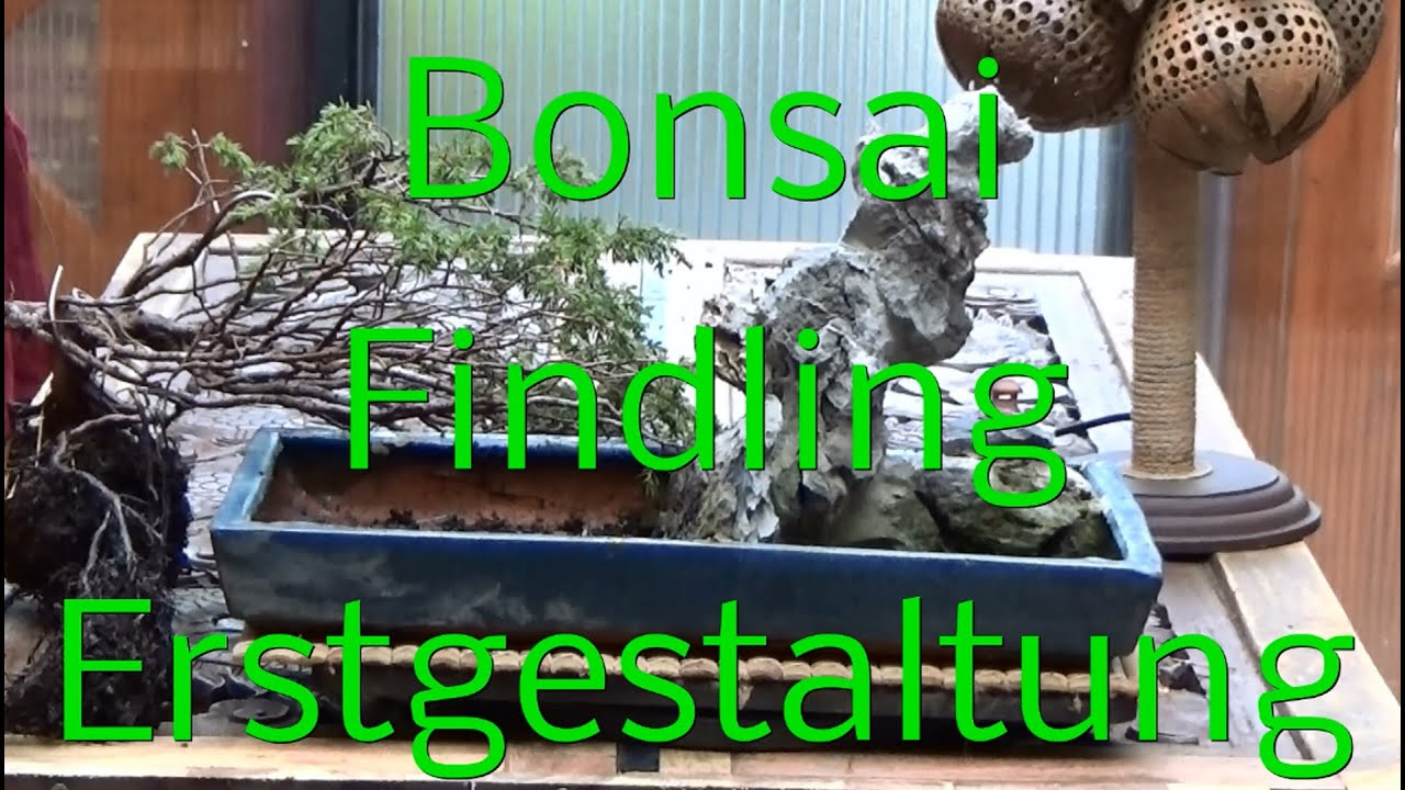 bonsai erstgestaltung findling youtube. Black Bedroom Furniture Sets. Home Design Ideas