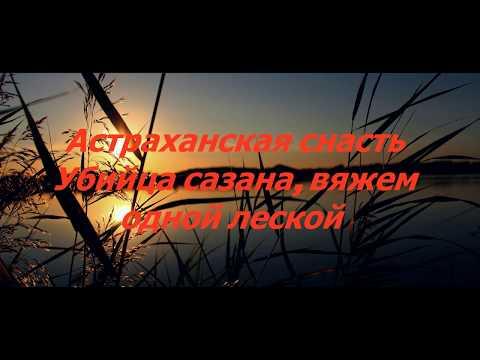 Астраханская снасть убийца сазана, снасть вяжем одной леской