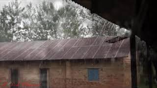 سقوط المطر على سقف معدني🌧️🌩️⛈️🌨️ RAIN FALLS ON ATINPLATE