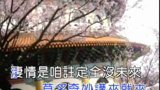 臺語新歌 - YouTube