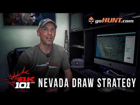 Do You Have Any Chance Of Hunting Elk In Nevada?