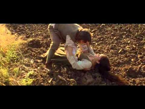 Because you loved me (Rebecca/Rolfe fan vid). The New World