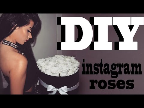 DIY INSTAGRAM ROSES