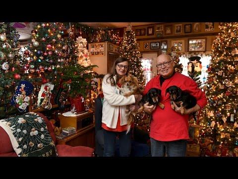 110 Christmas trees decorate family's home near Syracuse NY