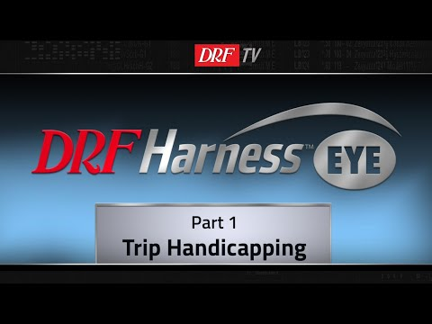 Learn To Bet Harness Racing Part 1 - Trip Handicapping