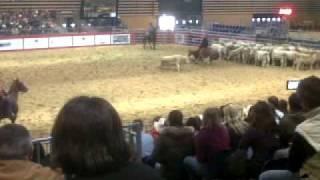 trie vache a la western.3GP