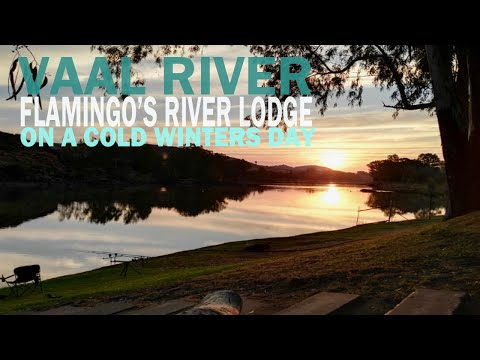 Carp Fishing Accommodation On The Vaal River, South Africa (Jun 2018) - Flamingo's River Lodge