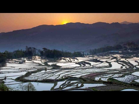 Chinese government issues guidelines for protection of natural resources