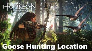 Horizon: Zero Dawn - Guaranteed Goose/Geese Hunting Location (5+ Geese Every Run)