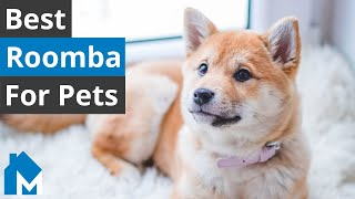 4 Best Roomba for Pet Hair — Roomba S9+ vs. i7+ vs. e5 vs. 675 Comparison