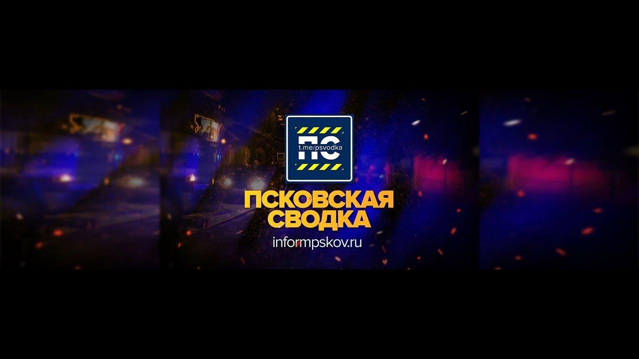 Псковская сводка - Выпуск 23
