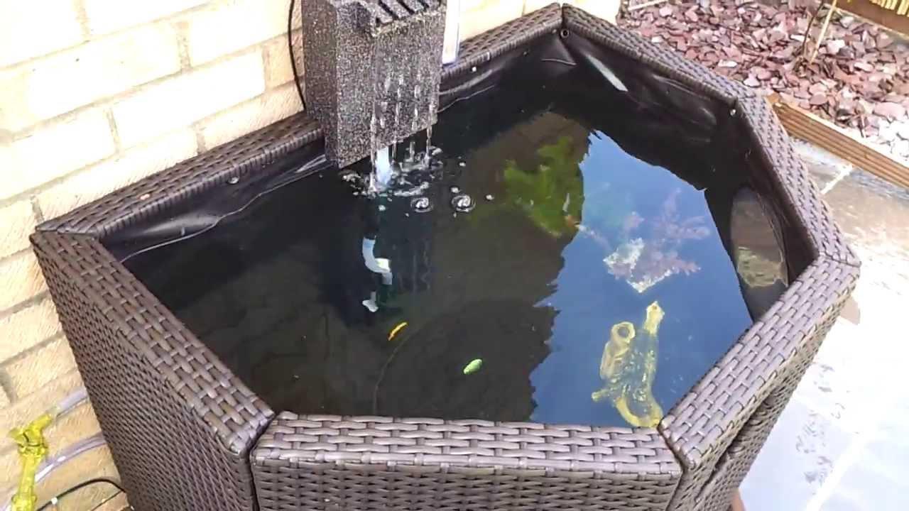 Affinity pond 1 no fish yet youtube for Affinity pond