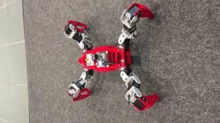 Quadruped Spider Robot, Moomy Rev.3, WarmingUp