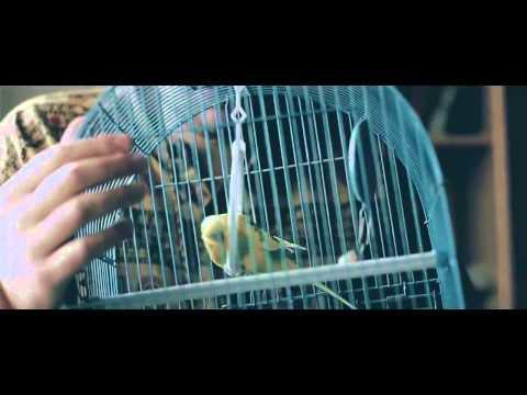 клип Баста - Гуф смотреть онлайн видео от музыка видео в