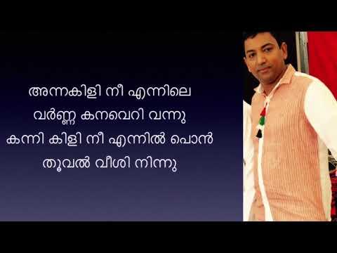 Annakili nee ennile Varna   karaoke with lyrics   അന്നകിളി നീ എന്നിലെ വർണ്ണ കനവെറി വന്നു