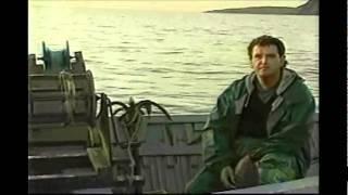 [2.89 MB] The Seagulls Still Follow On Freedom (Pat & Joe Byrne)