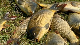Рыбак Рыбаку 503