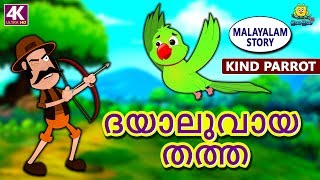 Malayalam Story for Children - ദയാലുവായ തത്ത | Kind Parrot | Malayalam Fairy Tales | Koo Koo TV