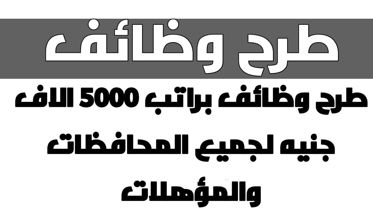 طرح وظائف براتب 5000 الاف جنيه لجميع المحافظات والمؤهلات