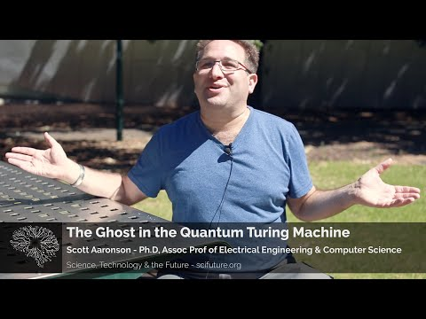 Scott Aaronson - The Ghost in the Quantum Turing Machine
