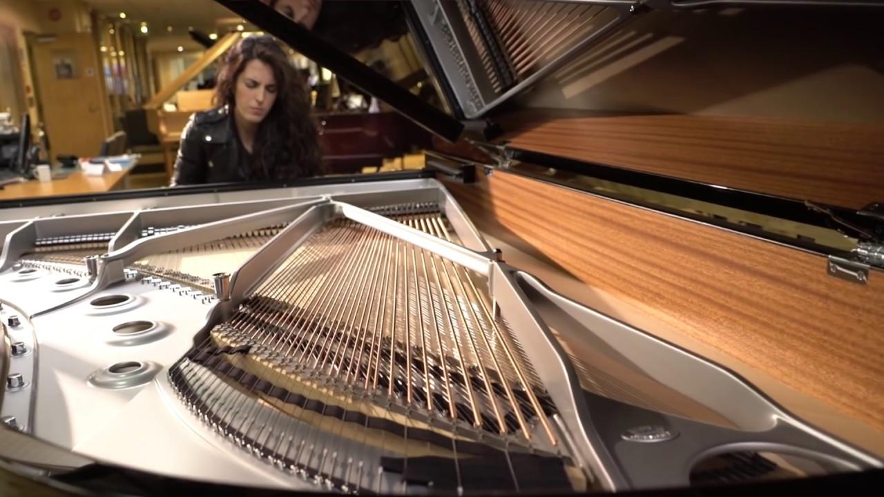 Chopin's Funeral March by AyseDeniz