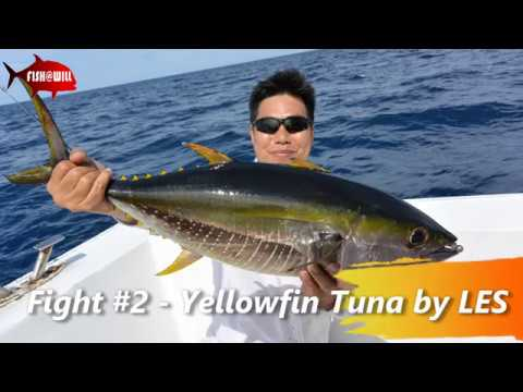 Burma Banks Offshore - Polaris One - Yellowfin