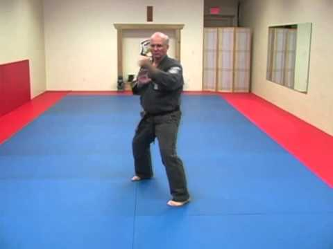 Bujin Kenpo Front Hand - Back Hand Drills