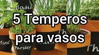 Temperos para Cultivar em Vasos