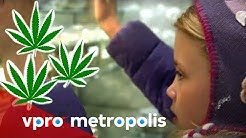 Cannabis for kids in the USA - vpro Metropolis