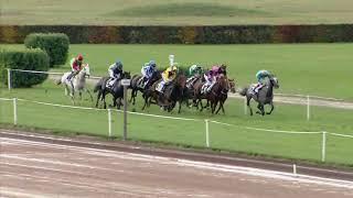 Vidéo de la course PMU PRIX DE CLOTURE DES GALOPEURS