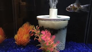 How To Make Betta Cup Sponge Filters