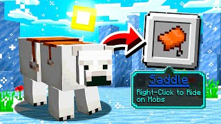 20 Most USELESS Minecraft Updates EVER!