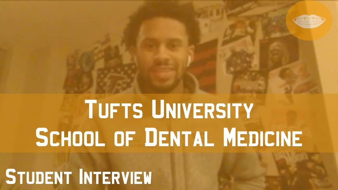 Tufts University School of Dental Medicine Student Interview || FutureDDS