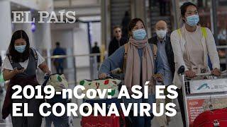 Las CLAVES del CORONAVIRUS 2019-nCov, el VIRUS DE WUHAN