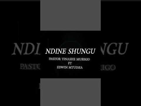 Download NDINE SHUNGU - TINASHE MURIGO ft EDWIN MTUDZA
