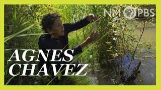 Agnes Chavez | NMPBS ¡COLORES!