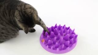 Миска - Диетолог для кошек