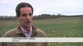 BBC News - Ministers 'caving in' on EU farming subsidy changes