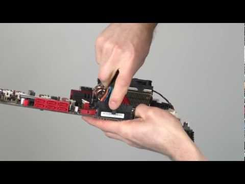 Motherboard Connectors - All you Need to Know as Fast As Possible