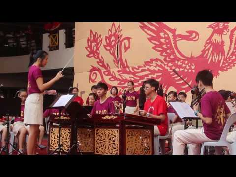 Chinese Orchestra Performance at HCI CNY 2017