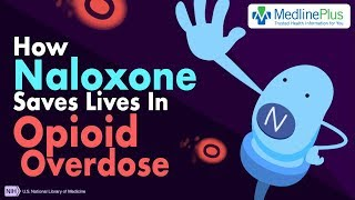 How Naloxone Saves Lives in Opioid Overdose