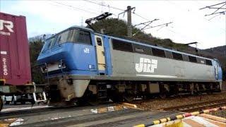2019年2月20日 山陽本線Gライン 貨物列車撮影記 様々なジョイント音を響かせ駆け抜ける貨物列車 総勢16本