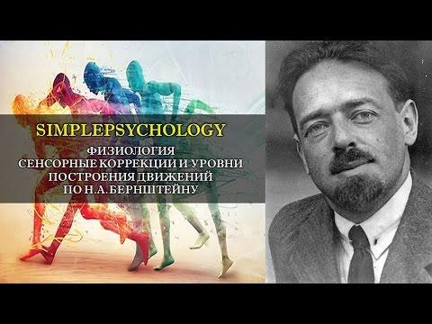 Физиология. Сенсорные коррекции и уровни движений Н.А. Бернштейна.