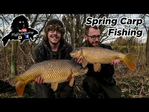 Spring Carp Fishing